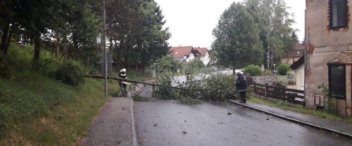Sturmschaden (T1) am 01.07.2019