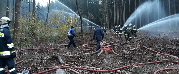 Waldbrand in Echsenbach am 19.10.2019
