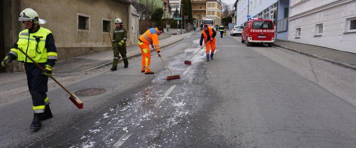 Beseitigen einer Ölspur (S1) am 26.02.2019
